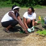 youth-planting-community-garden